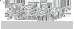 Polarbus logo